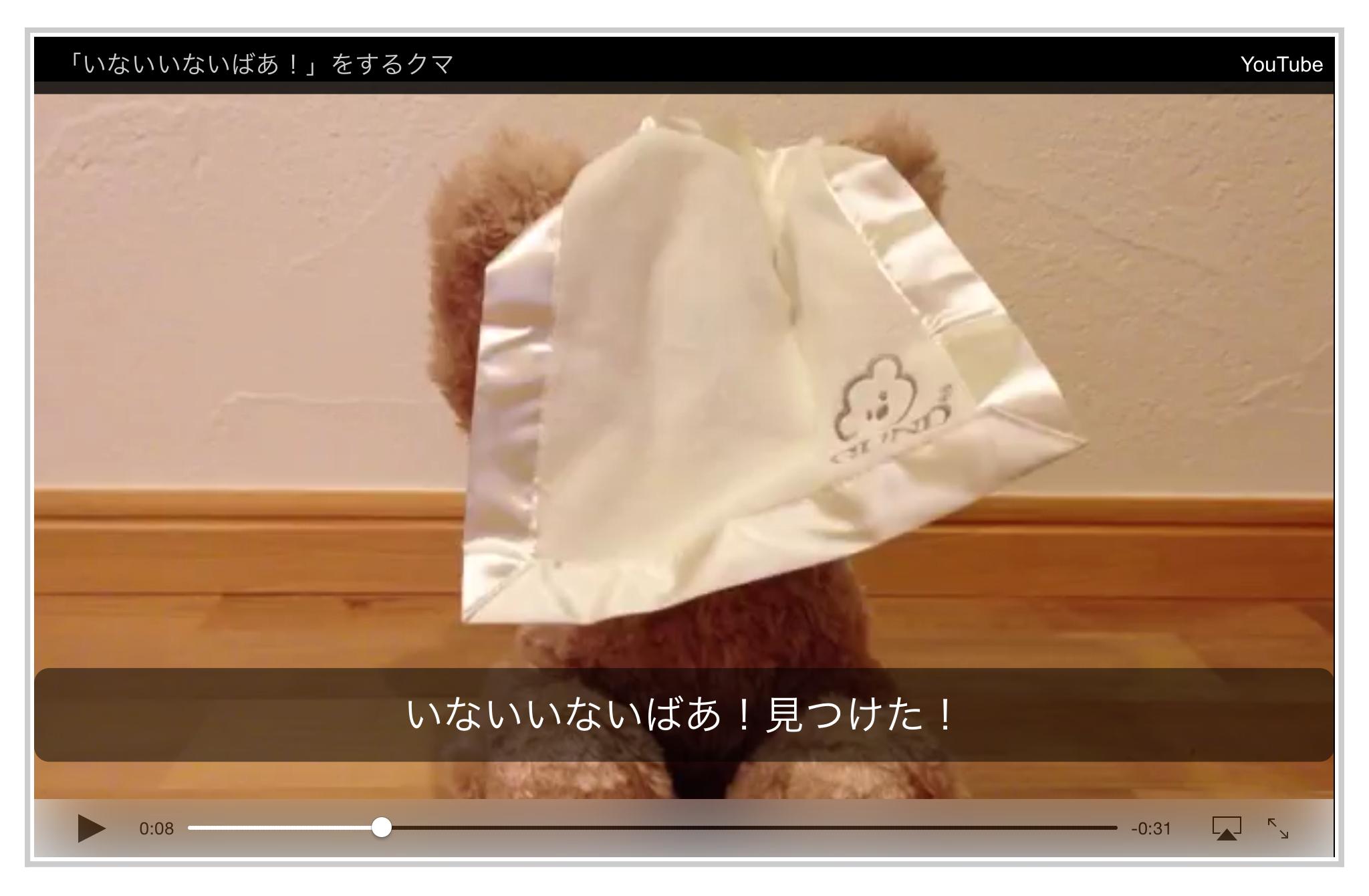 iPad での動画再生 (Web ページに埋め込まれた動画をそのままブラウザ上で再生)