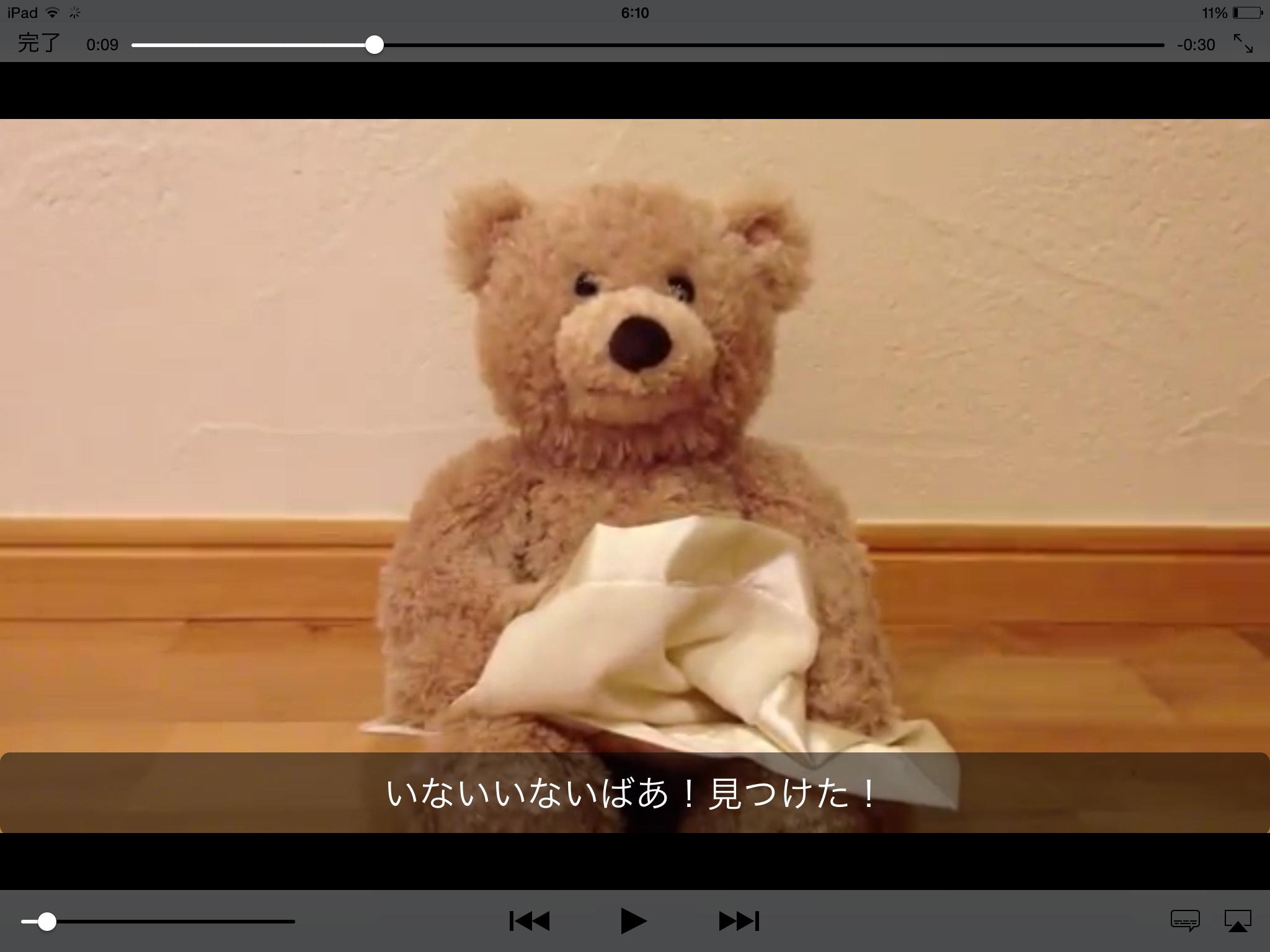 iPad での動画再生 (iOS 標準動画プレーヤーでの再生)